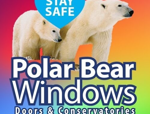 A message from our main sponsor Polar Bear